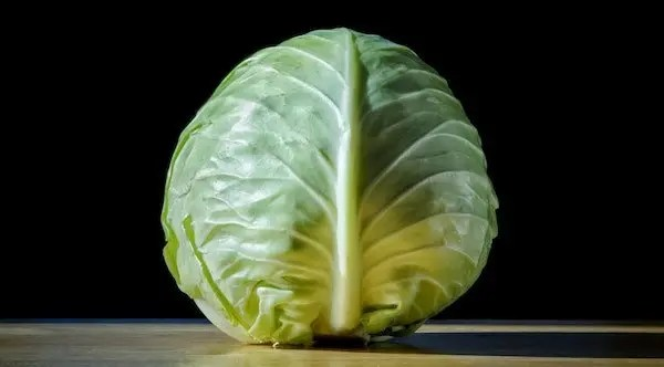 cabbage is a low carbohydrate vegetable