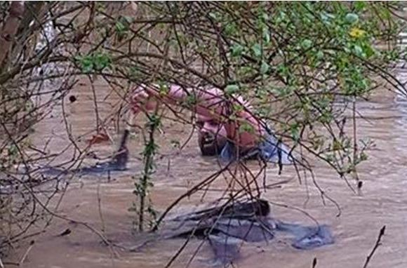 Man Dives Into Flash Flood To Save Stranded Animals