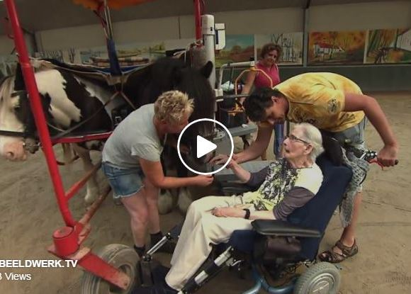 87 Year Old Woman Gets To Go Horse Riding Just One More Time