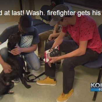 Firefighters Missing Dog Is Adopted By Another Family – Their Reunion Will Warm Your Heart