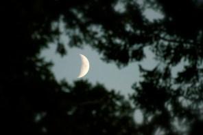 Bonne nuit la lune