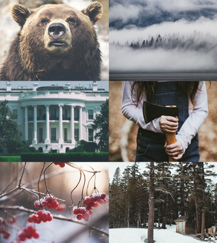 Not If I Save You First Aesthetic