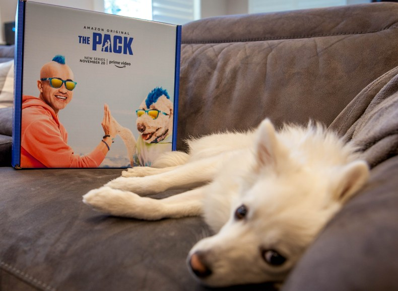 The Pack on Amazon Prime on November 20th