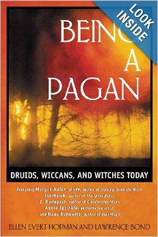 being-a-pagan-book