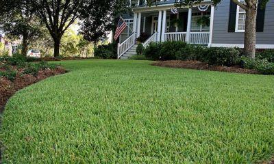 5 Things to Ruin & Improve Look of Empire Zoysia sod in Atlanta