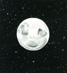 3rd Face in Moon-scavenger-www.signsofheaven.org