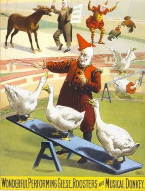 http://en.wikipedia.org/wiki/File:Barnum_%26_Bailey_clowns_and_geese2.jpg