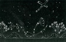 Two Turtledoves-Flower of the Field- Cross/Scepter Constellations