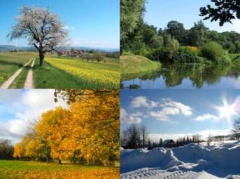 http://commons.wikimedia.org/wiki/File:Four_seasons.jpg