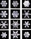 https://commons.wikimedia.org/wiki/File:SnowflakesWilsonBentley.jpg