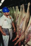 https://commons.wikimedia.org/wiki/File:Swine_inspection_USDA.jpg