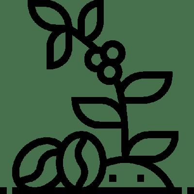 Thehempydog-productos-cáñamo-saludables