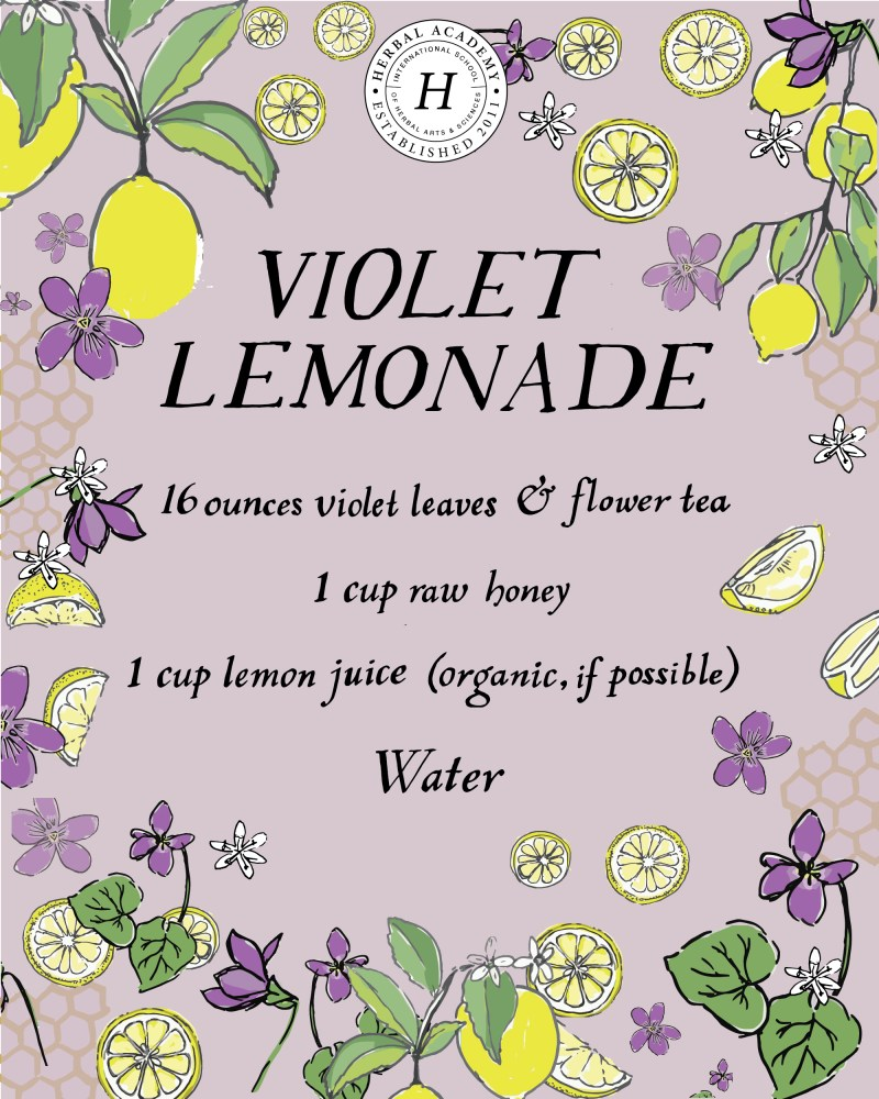 Refreshing Violet Lemonade | Herbal Academy | This refreshing violet lemonade recipe can be especially helpful for children, as they might resist a tincture but will happily drink lemonade!