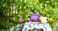 Herbal Academy Host A Kids DIY Spa Day In Your Backyard ...