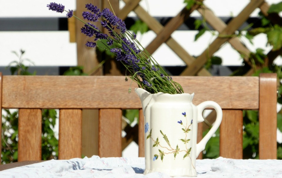 The benefits of lavender in the family home herbal academy - Arredare il bagno spendendo poco ...