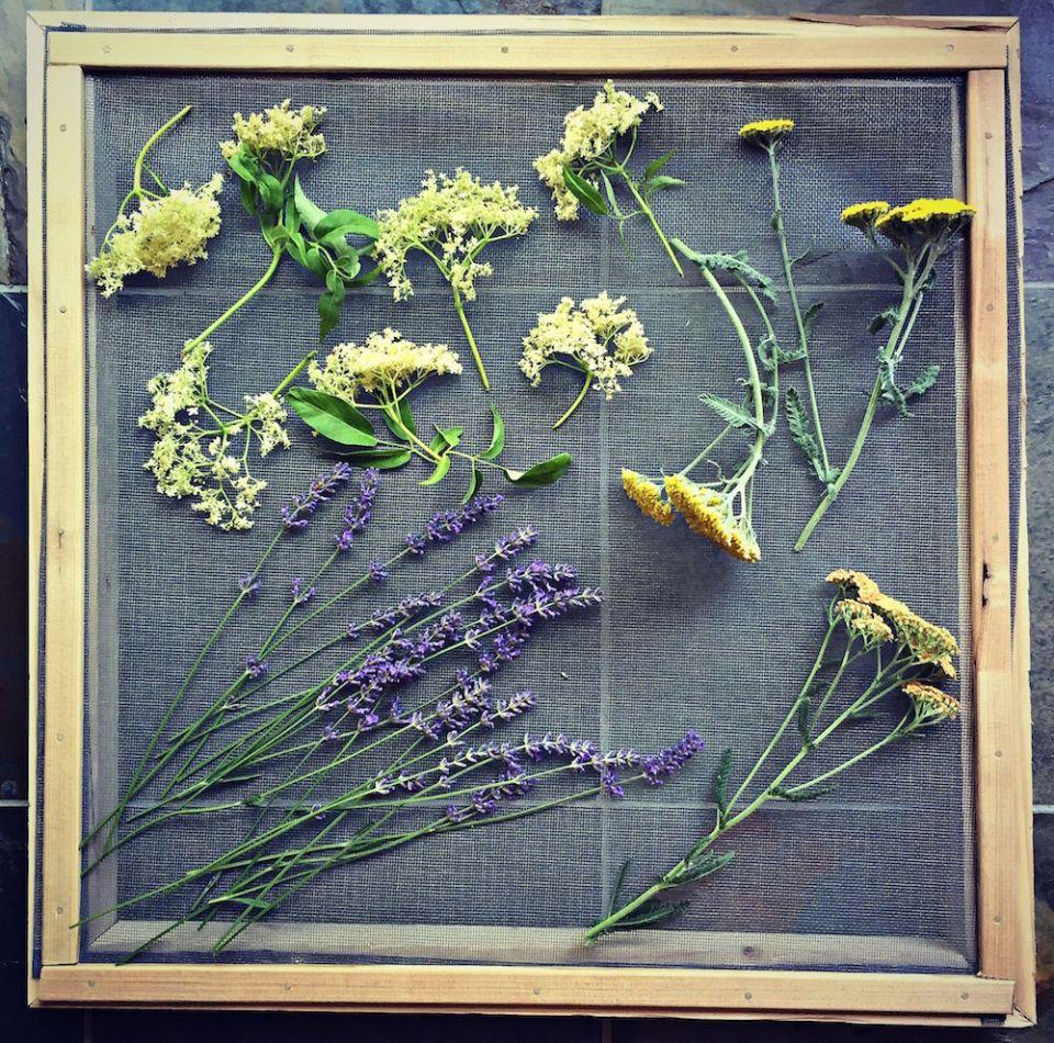 flower drying screen