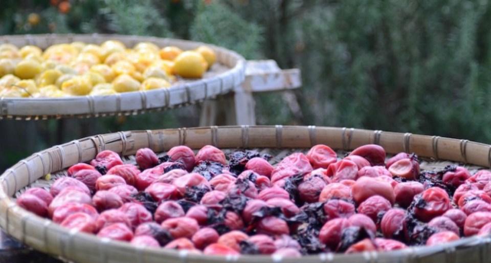 4-Methods-for-Seasonal-Food-Preservation-Dried-Plums