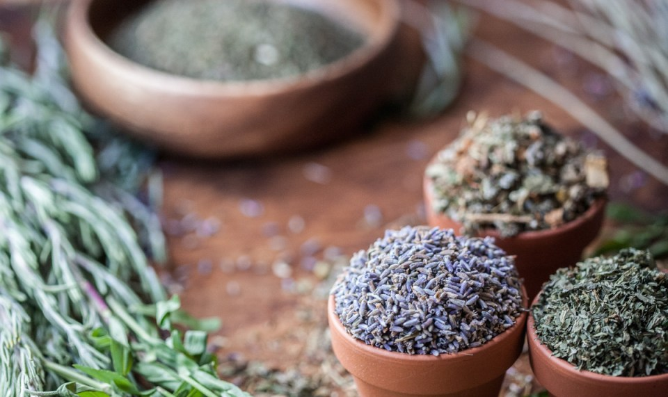 Get started in your Herbalism Studies at the Herbal Academy