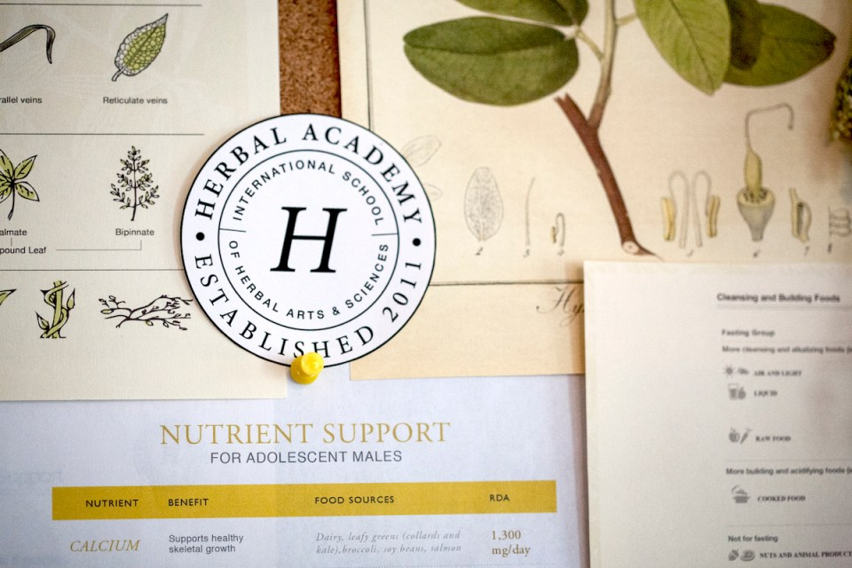 Herbal Academy: The Journey | Herbal Academy | This is the story of how a few herbalists turned a monthly herbal class into the Herbal Academy — an international school of herbal arts and sciences.