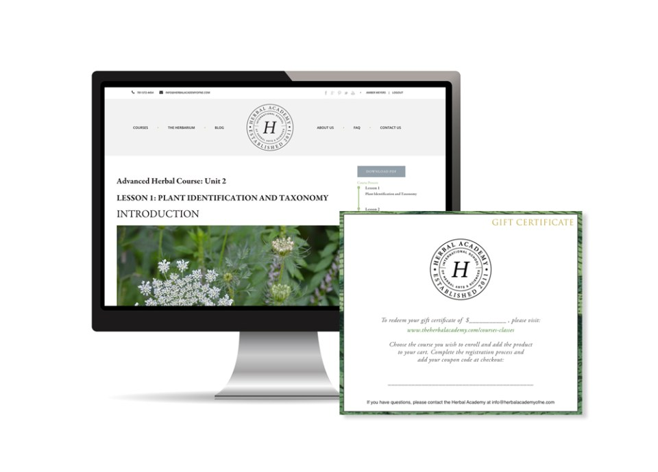 Online Herbalism Courses and certificate