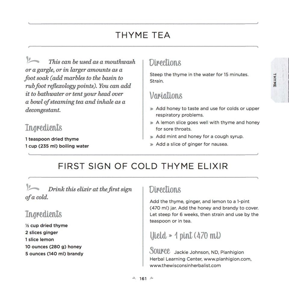 Healing Herbs Recipe – Thyme Tea and Thyme Elixir