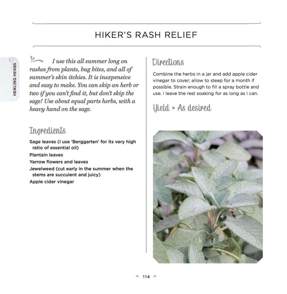 Healing Herbs Recipe for Hikers Rash Relief