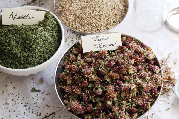 Learn Herbs at Home at Your Own Pace | Online Herbalism ...