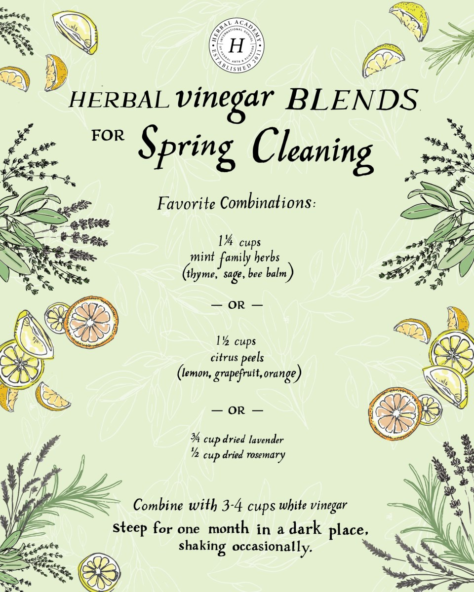 Herbal Vinegar Recipe Blends for Spring Cleaning
