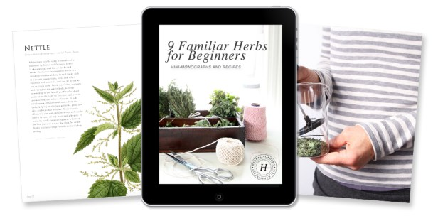 The herbal academy online herbalism education 9 familiar herbs for beginners free ebook by the herbal academy fandeluxe Ebook collections