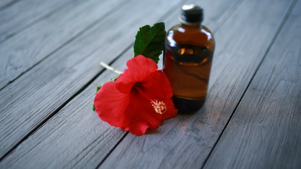 How To Use Essential Oils For Scarring   Herbal Academy   Essential oils are useful for any herbal first aid kit. Learn how to use essential oils for scarring.