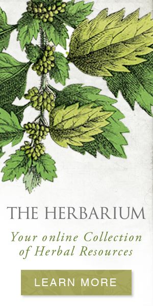 The Herbarium - collection of herbal resources