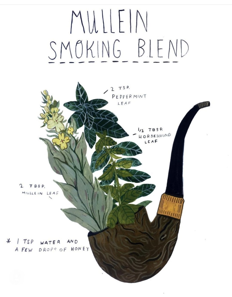 How To Craft Your Own Herbal Smoking Blends | Herbal Academy | Learn how to create your own herbal smoking blends that are enjoyable and can benefit your health at times.