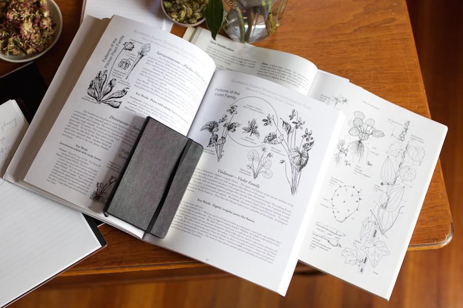 The Free Herbal Materia Medica Course by Herbal Academy – You will learn where to look for quality herbal information and how to research. You'll receive an extensive list of references––from books to online websites and databases––to help get you get started in your journey.