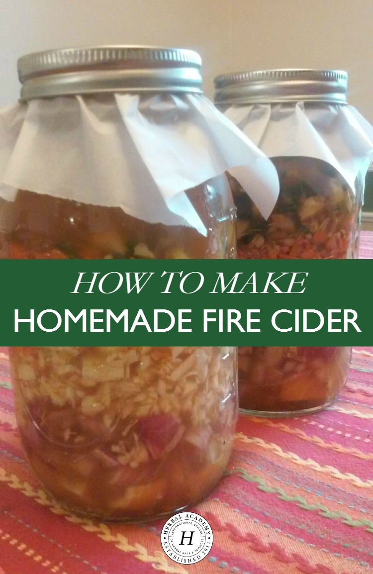 How To Make Homemade Fire Cider | Herbal Academy | Learn how to make your own homemade fire cider for winter wellness!