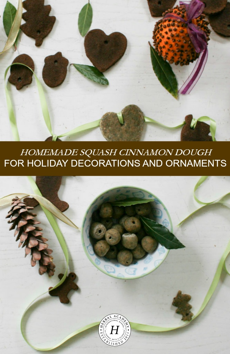 Homemade Squash Cinnamon Dough for Holiday Decorations and Ornaments | Herbal Academy | Tis the season for decorating Christmas trees and giving gifts! These DIY squash cinnamon dough decorations are a great fit!