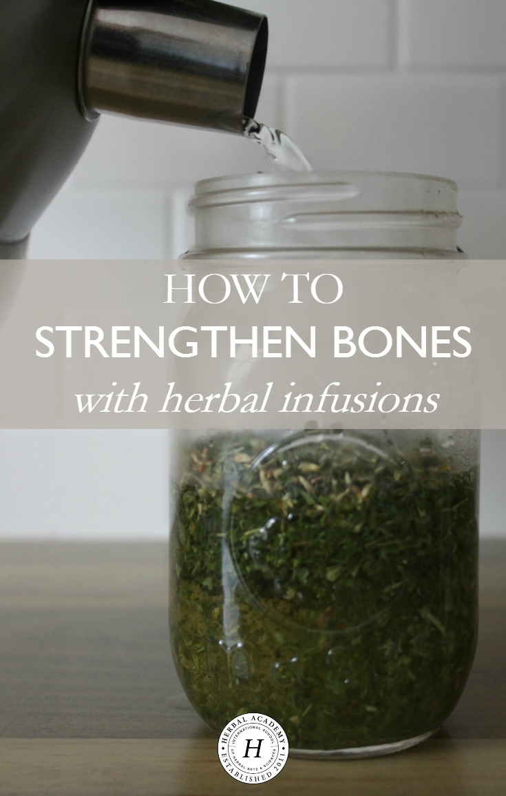 How To Strengthen Bones With Herbal Infusions | Herbal Academy | Here's a bone building protocol as well as a mineral-rich recipe to help you strengthen bones with herbal infusions while they are on the mend!