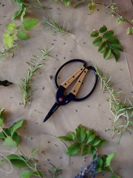 Foraging Scissors- Herbal Academy Goods Shop