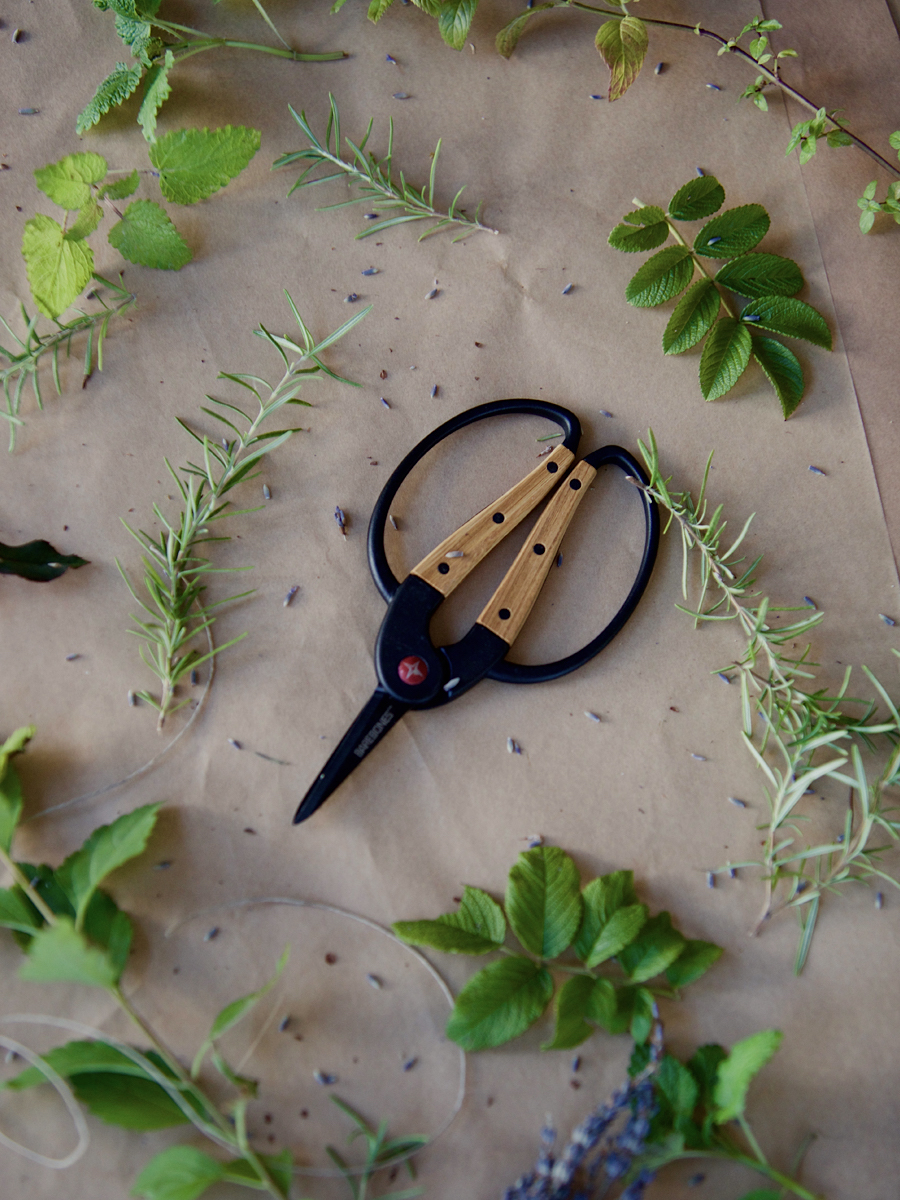 Foraging Scissors- Herbal Academy Goods Shop