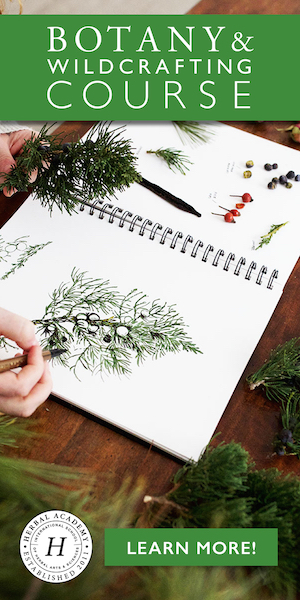 Botany & Wildcrafting Course by Herbal Academy