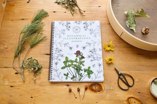 The Botanical Illustrations Workbook by Herbal Academy