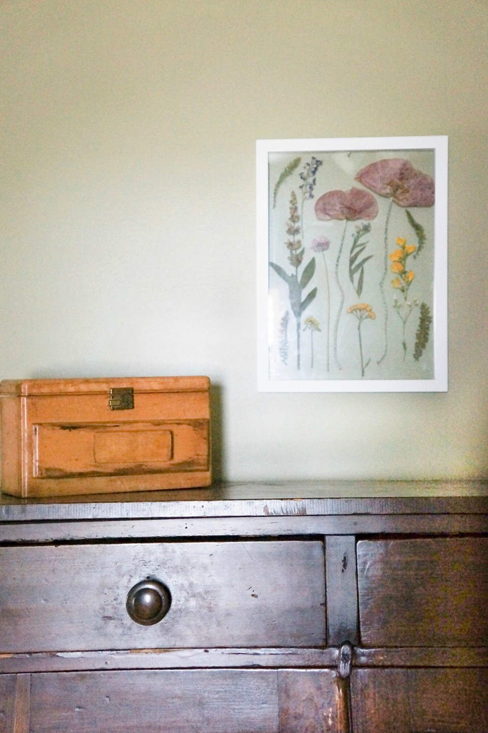 How To Make Framed Botanicals to Decorate Your Home