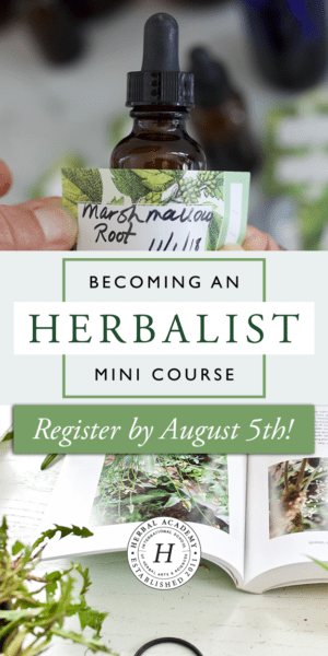 Enroll in the FREE Becoming an Herbalist Mini Course and discover your herbal path