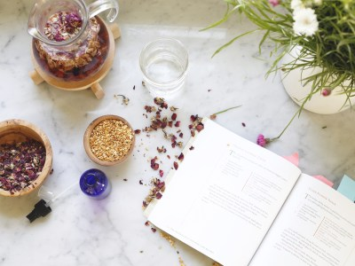 5 Herbal Lifestyle Books To Read This Year | Herbal Academy | If incorporating herbalism into your lifestyle is appealing to you, here are 5 of our favorite herbal lifestyle books to help you get started!