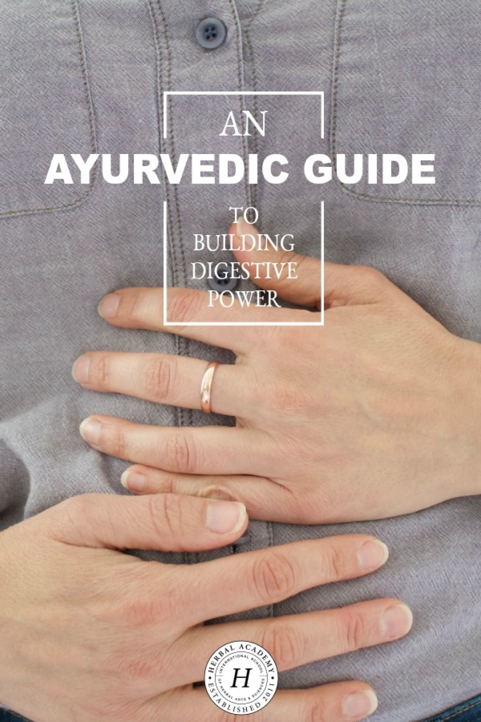 An Ayurvedic Guide to Building Digestive Power | Herbal Academy | Come join us as we explore Ayurvedic methods for improving digestive health naturally, and ultimately, building digestive power.