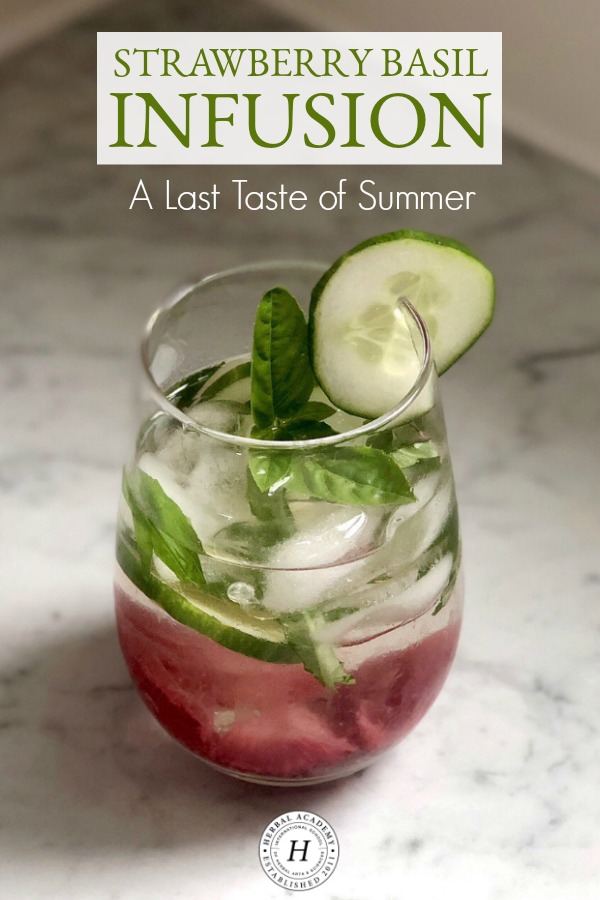 Strawberry Basil Infusion: A Last Taste of Summer | Herbal Academy | Enjoy the last taste of summer with this delicious and simple Strawberry Basil Infusion. It's a perfect fit for those final days of summer!