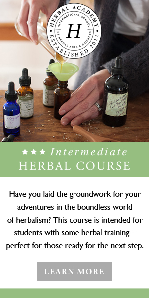 Start Your Herbal Journey