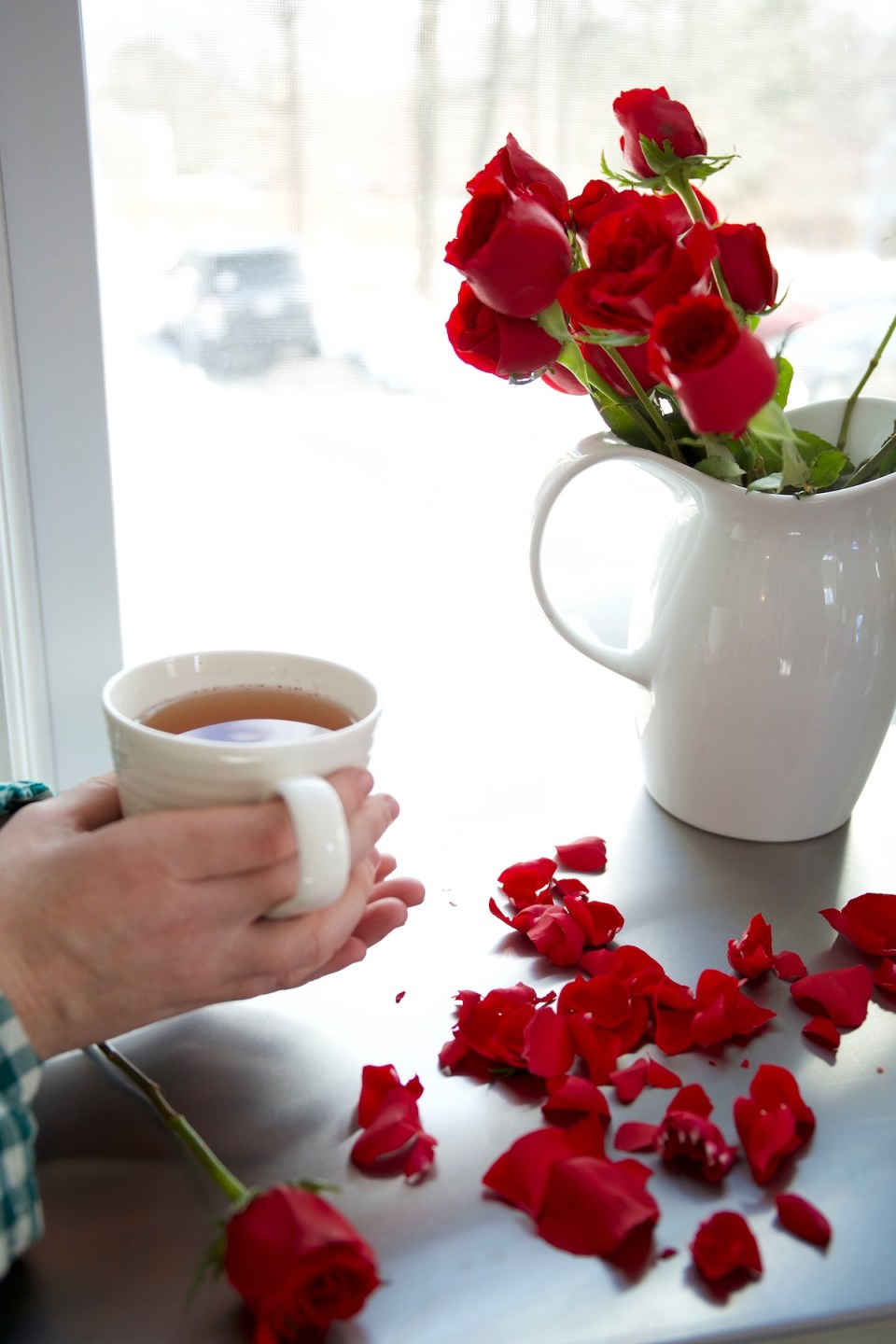 How To Use Rose for Grief Support | Herbal Academy | Rose has many uses during states of grief. Learn how rose can soothe the human spirit during grief as well as some simple recipes for use in this post.