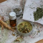 Herbal Travel Essentials For The Adventurous Traveler   Herbal Academy   If you're planning on some adventurous travel in the near future, this herbal travel essentials guide will help you find the herbs and preparations to take with you.