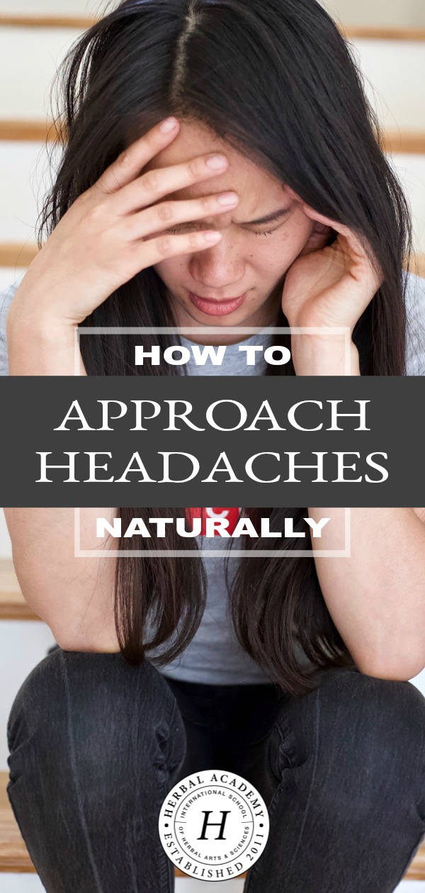 How To Approach Headaches Naturally   Herbal Academy   Learn how dietary, herbal, and lifestyle factors can help you keep headaches at bay or approach headaches naturally if they do occur.