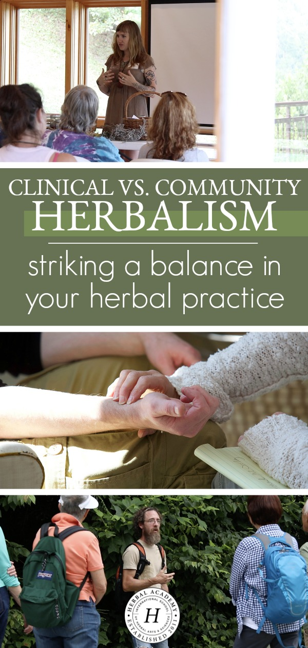 Community Vs. Clinical Herbalism: Striking A Balance In Your Herbal Practice | Herbal Academy | Learn the unique benefits of community and clinical herbalism, as well as how to strick a balance and incorporate both paths into your herbal practice.